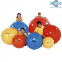 Physio Gymnic Cm 85 Colore Rosso