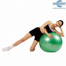 Verde Gymnic Plus Diam 65